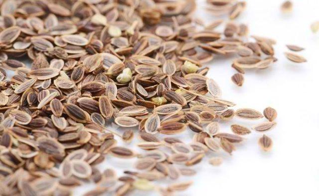 сертификация семян